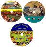 Meccano Magazine Collezione Completa 3x DVD Set + 400 Bonus Manuale Per PC MAC