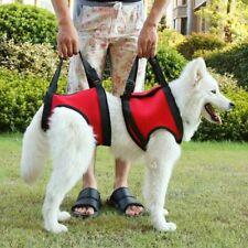 2Pcs/Set Dog Vest Lift Support Harness Old Disabled Pet Collar Auxiliary Strap