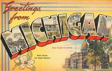 Large Letter postcard Greetings from Michigan MI