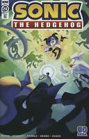 Sonic The Hedgehog #28 1:10 Variant (2020 Idw) First Print Fourdraine Cover