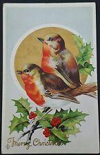 Postcard Christmas SLC 1911 Series 224 E Merry Christmas Unposted Birds Goldfoil