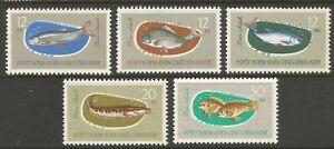 STAMPS-NORTH VIETNAM. 1963. Freshwater Fish Set. SG: N272/76. Unused