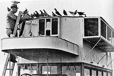 WW1  - Colombier militaire sur un camion