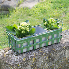 Vintage Metal Plant Pots with Green Tray Crate Herb Plant Flower Planters Trough