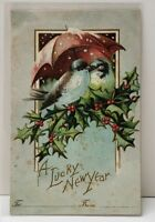 A lucky New Year, Birds Perched On Holly Under Umbrella Embossed Postcard B7