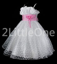 Heart Pattern Wedding Flower Girl Pageant Party Formal Occasion Dress 6m-10 #001