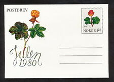 SMAA_166 Norway STATIONERY COVER FLOWERS BERRIES Combine Shipping