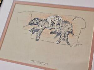 Vintage Original Cecil Aldin Print 'TREPIDATION'
