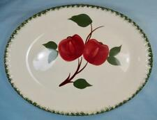 Quaker Apple 11 Inch Oval Serving Platter Blue Ridge Southern Pottery Red (O)