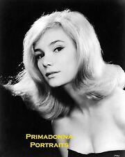 YVETTE MIMIEUX 8X10 Lab Photo SEXY 1960s SOFT DELICATE GRACEFUL Beauty PORTRAIT