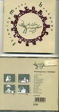 THROWING MUSES Hunkpapa Original 1989 4AD