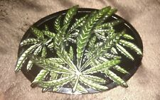 Marijuana Leaf Belt Buckle Weed Pot Medical Herbs Plant