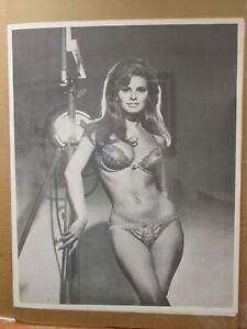 Rachel Welch Hot Girl  black and white Vintage Poster  1970's Inv#G4179