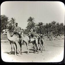 Vtg Keystone Magic Lantern Slide Photo Train Of Camels Egyptian Desert Oasis