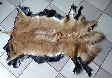 CAMEROON SHEEP SKIN.NICE