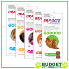 Bravecto For Dogs - 2 Chews