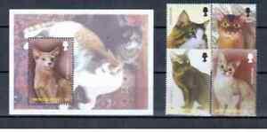 Montserrat 2004 domestic animals cats set+s/s MNH