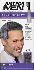 Trattamento per capelli grigi, Pettina applicatore per effetto brizzolato, Uomo
