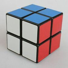 Shengshou Magic 2 X 2 Ultra-smooth Professional Speed Cube Puzzle Twist Hot