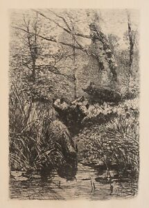Antique German Etching print by Johann Christian KRONER, Wild boar at the stream