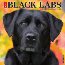 Just Black Labs (dog breed calendar) 2021 Wall Calendar(Free Shipping)