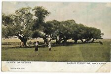 (0472)  1909(?)  P/C LAND OF EVANGELINE, NS - GREENVILLE STATION SPLIT RING CANC