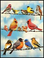 Birds on a Wire - Chart Counted Cross Stitch Patterns Needlework DIY 14 ct Aida
