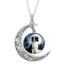 Glass Crescent Moon Necklace Dog Photo Tibet Silver Cabochon
