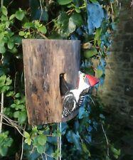 Woodpecker Bird Knocker On Tree Stump Hand Crafted Fair Trade