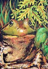 Frog Toad American Bullfrog  O/E Print  ACEO  by Vicki