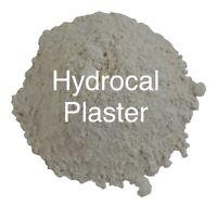 2.75lbs Statutory Plaster Casting Stone Bulk Refill Luna Bean Casting Keepsakes