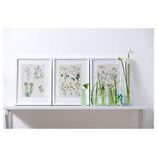 "IKEA Art Print TRILLING 3 Poster 11.75 15.75""Botanical WildFlower Melinda Mendez"