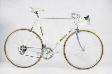 Bottechia Champione Del Mondo Vintage steel Italian bicycle