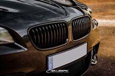schwarz glänzende Nieren BMW 5er F11 Touring Frongtrill Grill M5 Salberk 1001