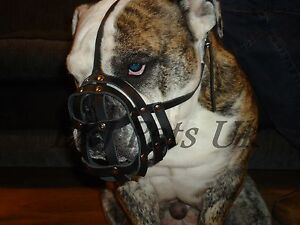 Light leather Dog Muzzle for English Bulldog and Other dogs with short snout
