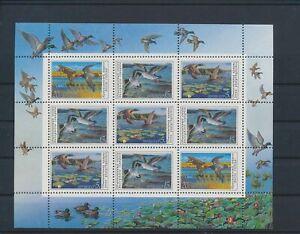 LO41301 Russia ducks animals birds good sheet MNH