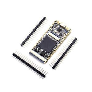 1pcs FPGA Development Board RISC-V Development Board Core Board