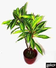 New Indoor Outdoor Potted Artificial Large 90cm Tall Dracaena Plant Tree Decor