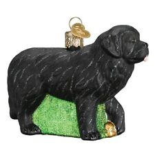 New ListingOld World Christmas Newfoundland Dog Glass Tree Ornament 12529 Free Box Pet New