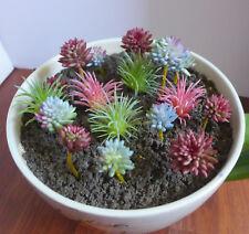 17 Flocking Artificial Succulents Plants Coral columns Mini Pine Tree Grass