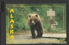 Colour Postcard Portrait  Brown Bear Fishing Limit Alaska  unposted