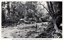 1934 Print Camp Men Fishing Trout Stream Smoky Mountains Smokemont N. Carolina