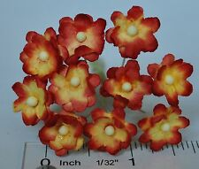 Mulberry Paper Flower Tiny Phlox daisy Red & Light Yellow for doll house craft
