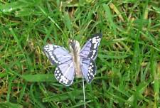 Feather Butterflies Tiny Lilac Speckled Wings - 3.0cm - Set of 2