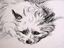 """Lucy Dawson CAIRN TERRIER Deep in Thought """"Dilly"""" 1946 Vintage Dog Print Matted"""