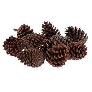 10Pcs Real Natural Big Pine Cones Crafts Bulk For Home Accents Decorations