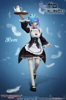 Re: Life in a Different World from Zero Rem 1/6 scale painted movable figure