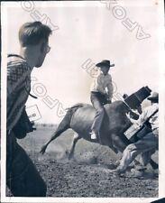 1951 Cheyenne Wyoming Famous Frontier Days Rodeo Brahma & Camera Man Press Photo