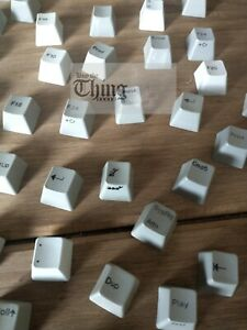 IBM Model M key caps weird selection bag oddball keyboard keycaps