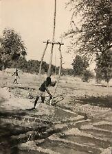 Cameroun  Rhumsiki Afrique irrigation Kapsiki CIRCA 1950 argentique Cameroon